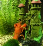 aquariumdekoration-150x200